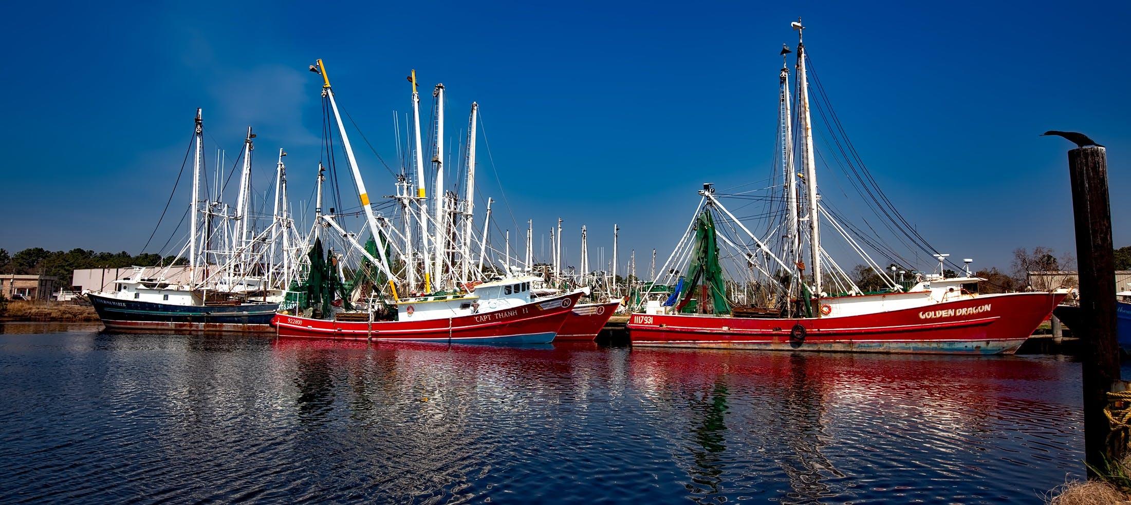 Free stock photo of bay, boats, industry, harbor