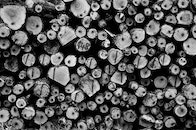 wood, black-and-white, industry