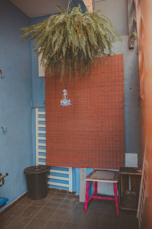 Fotos de stock gratuitas de adentro, asiento, casa, colgando