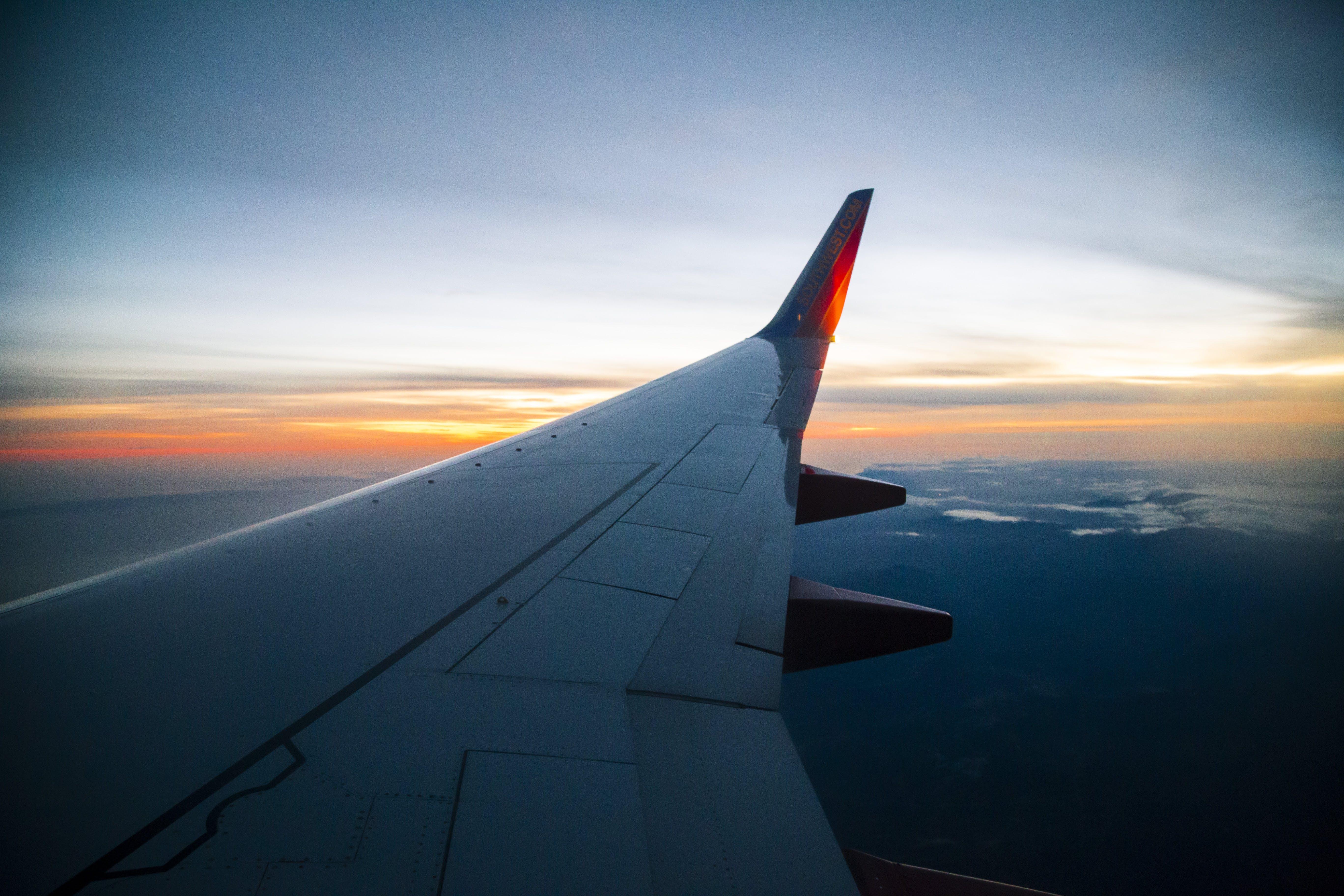 Kostenloses Stock Foto zu blau, fliegen, flügel, flugzeug