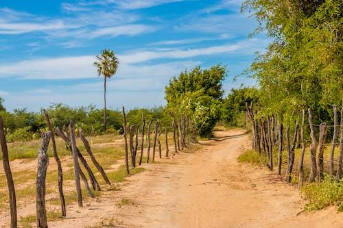 Darmowe zdjęcie z galerii z autostrada, krajobraz, ścieżka