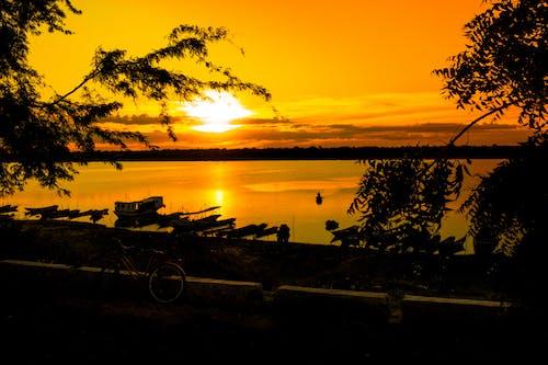 Darmowe zdjęcie z galerii z wieczorne słońce, złote słońce