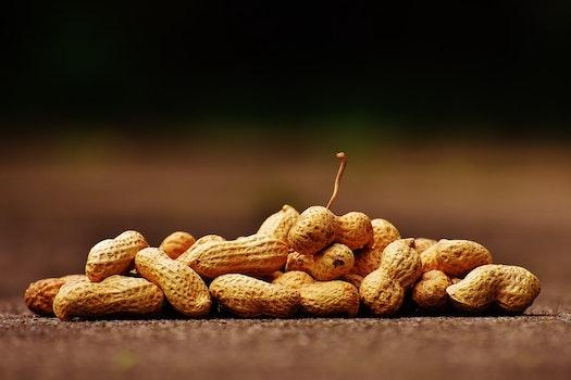 Brown Peanuts