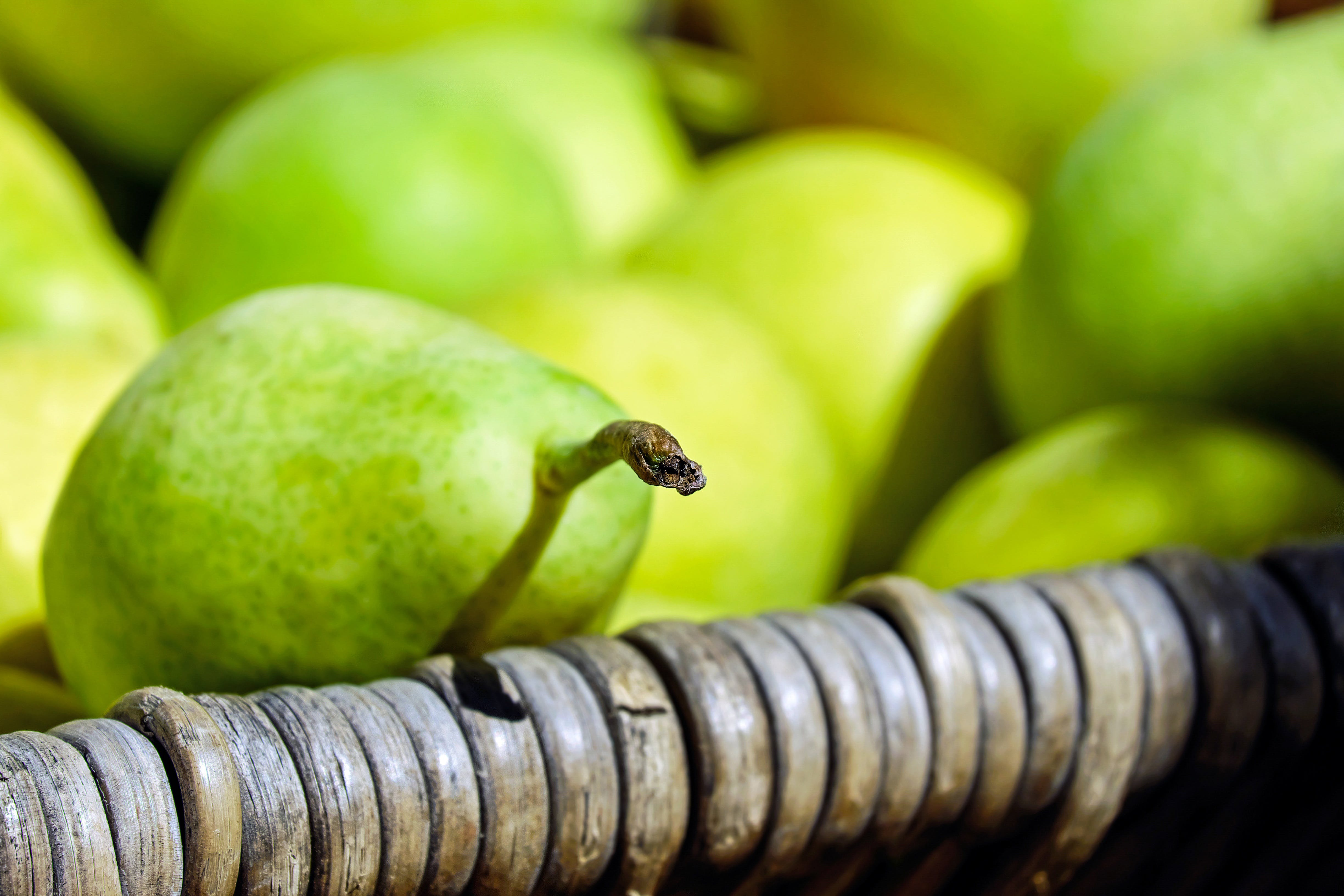 Free stock photo of fruit, fruits, green yellow, harvest