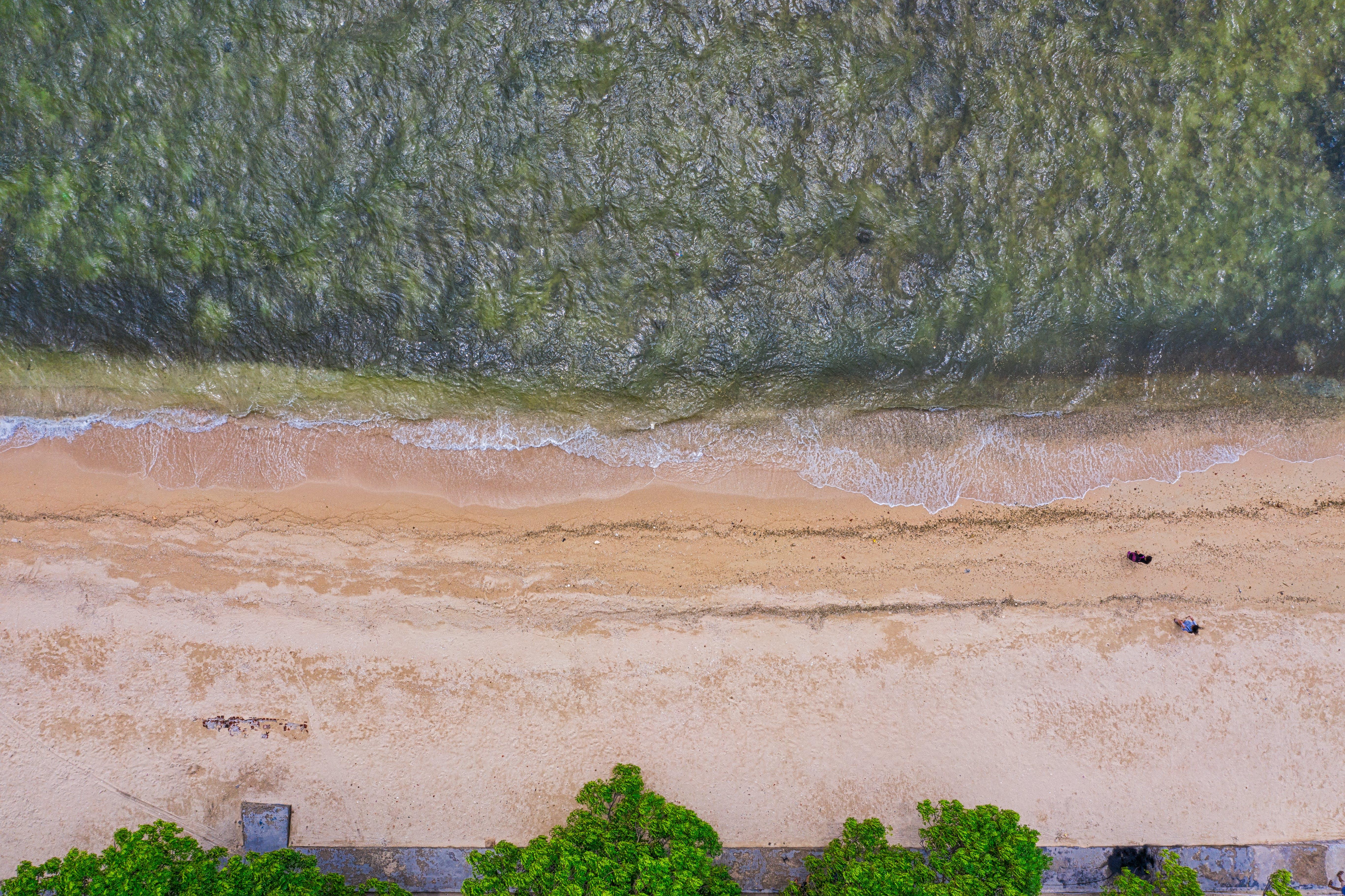 Foto profissional grátis de aerofotografia, areia, beira-mar, costa