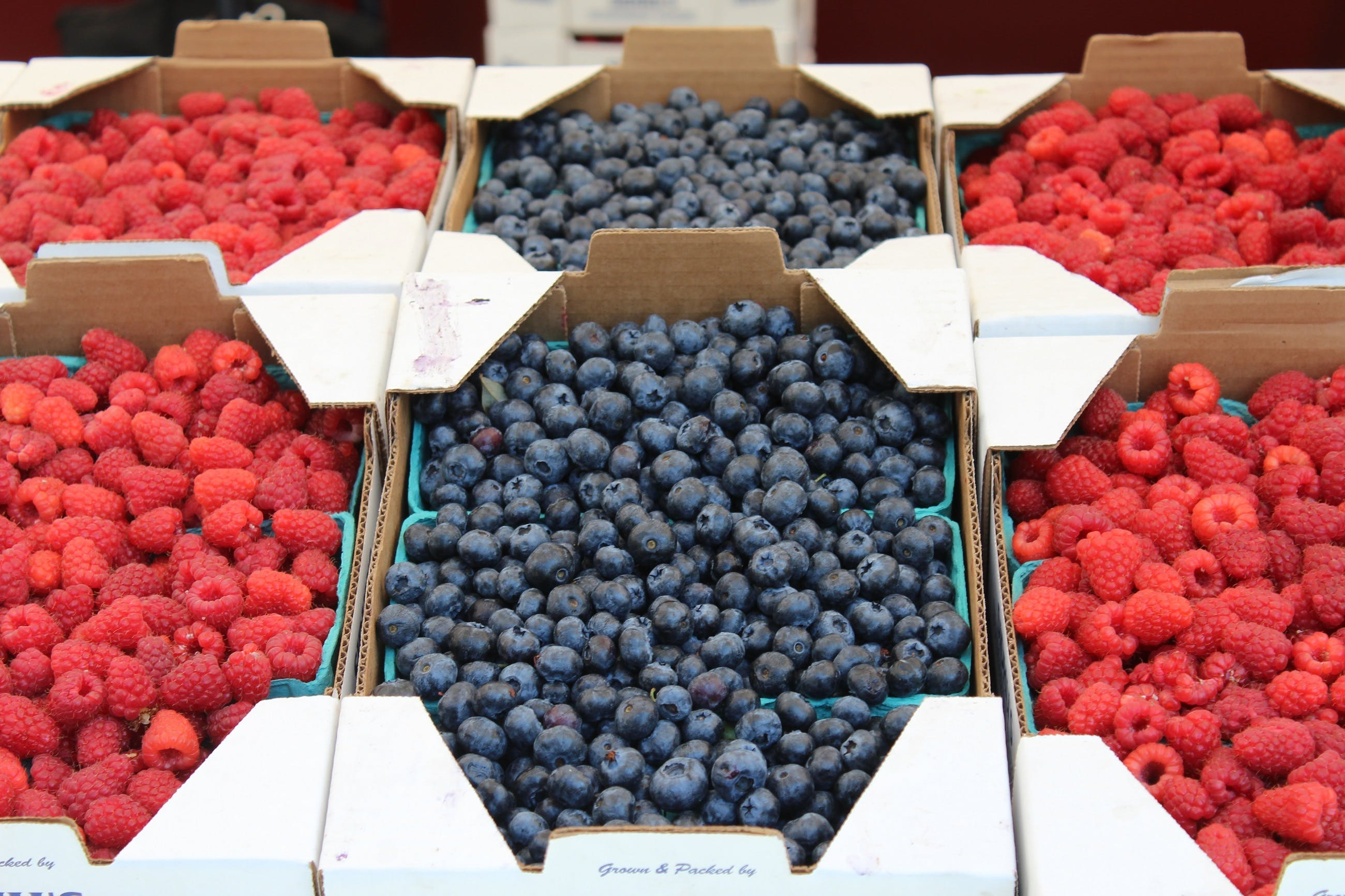 Free stock photo of food, healthy, red, blue