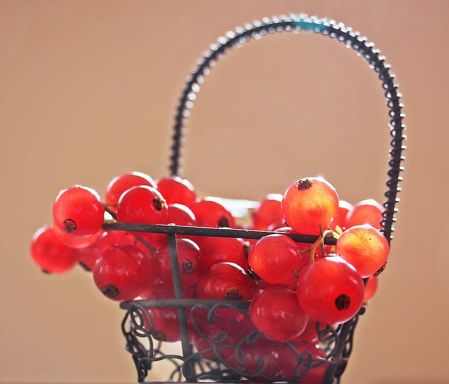 Red Cherries on Silver Metal Basket Photo