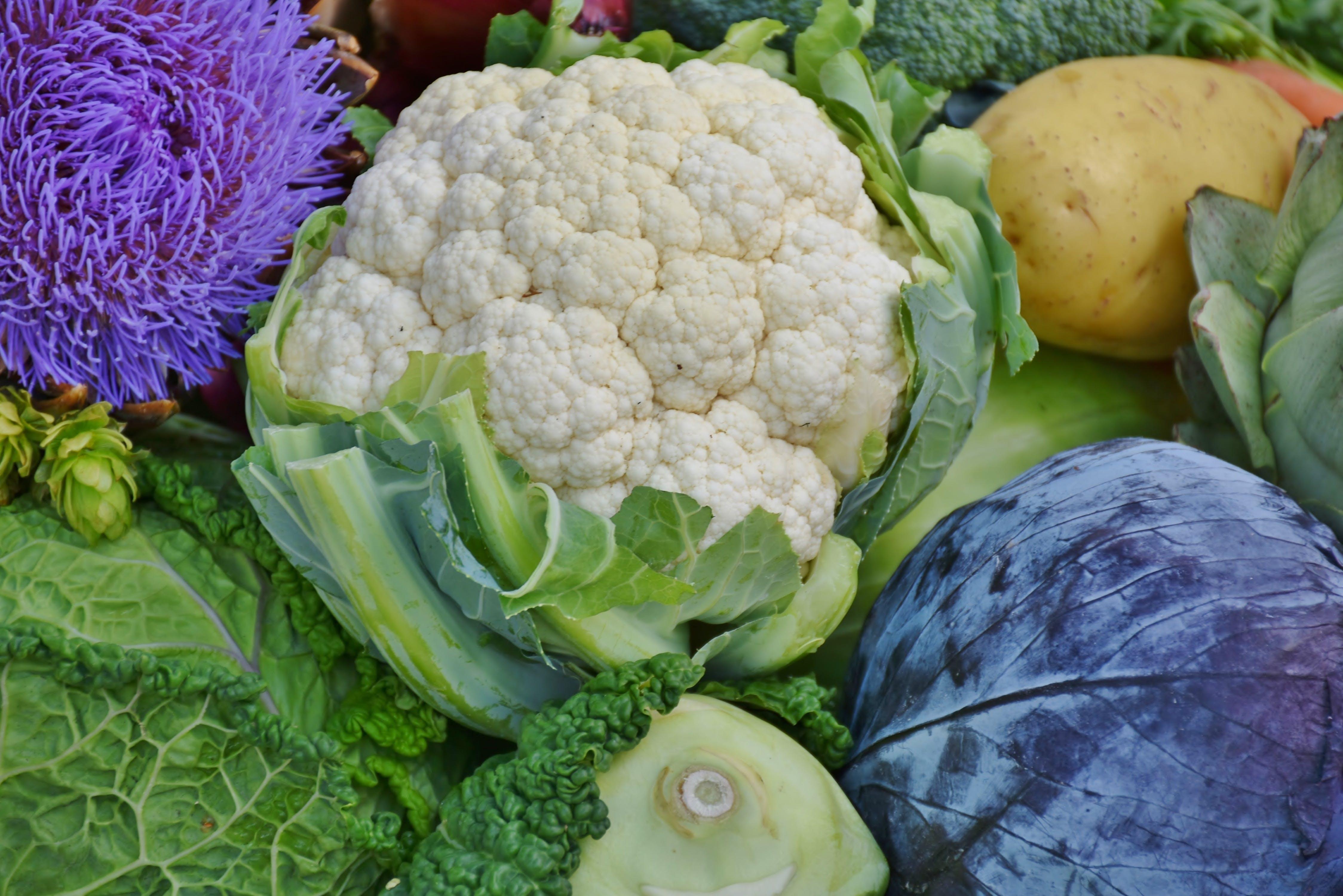 Foto stok gratis kol bunga, makanan, Sayuran, segar