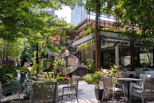 açık hava, ağaçlar, avlu, Bahçe içeren Ücretsiz stok fotoğraf