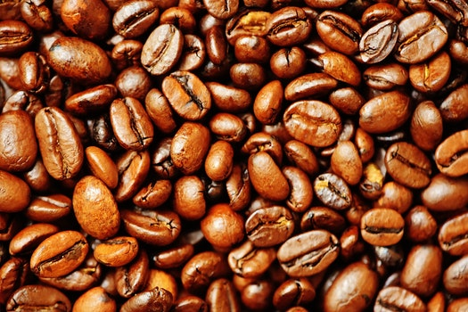 Free stock photo of beans, caffeine, cappuccino, café