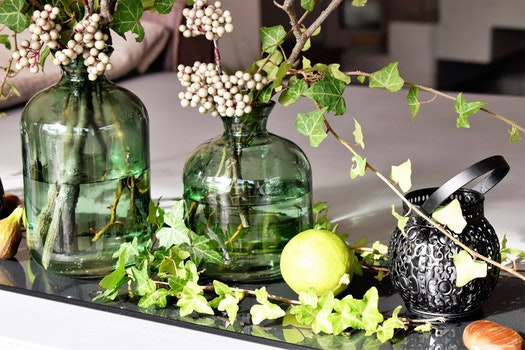 Green Leaved Plants in Green Clear Glass Vase