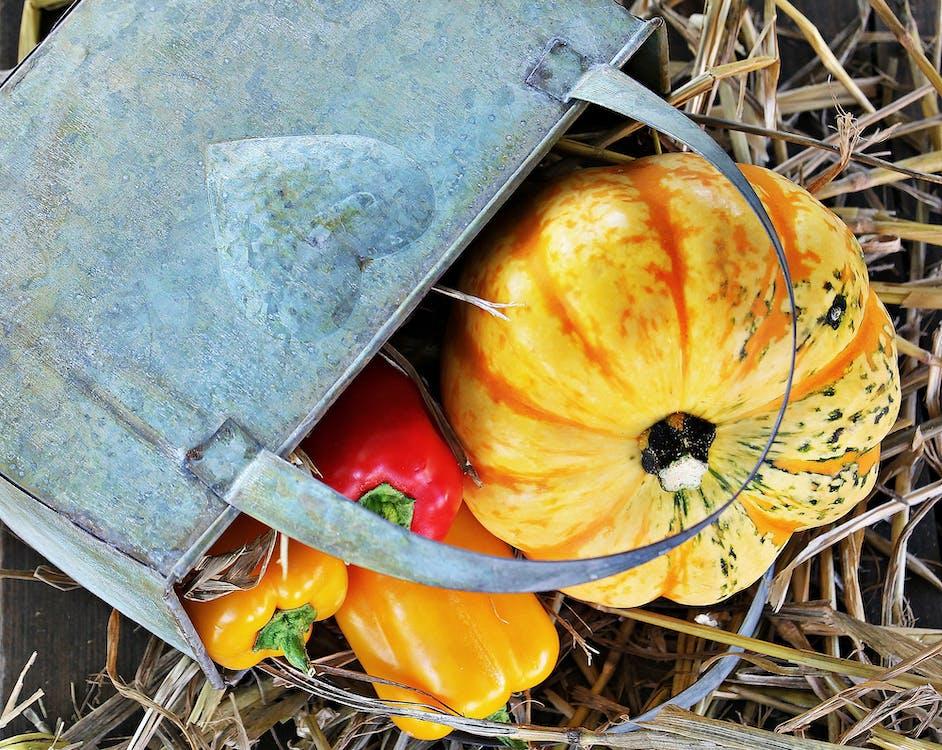 Orange Pumpkin and Gray Tote Bag