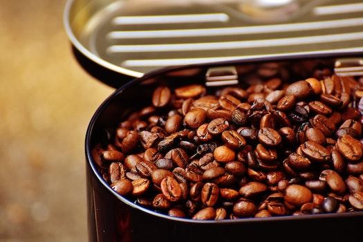 Kostenloses Stock Foto zu bohnen, koffein, kaffee, dunkel
