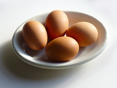 Brown Chicken Egg