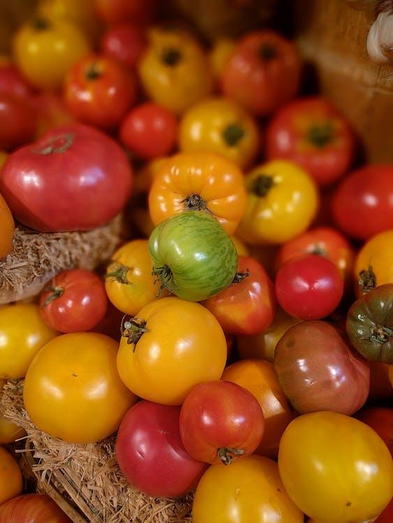 jedzenie, pomidory, świeży