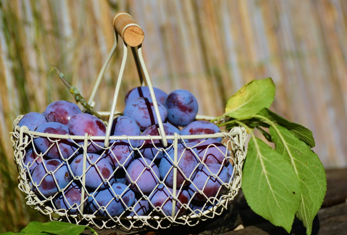 Purple Grape Fruits in White Steel Basket