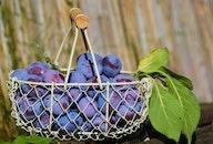 food, healthy, purple