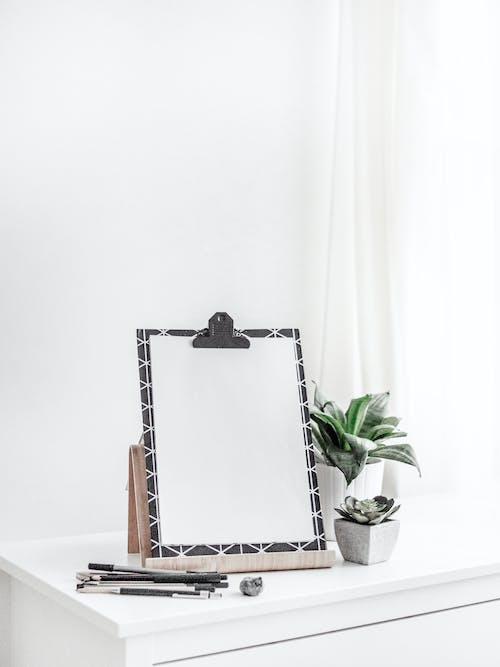 Δωρεάν στοκ φωτογραφιών με mockup, γλάστρες με φυτά, δωμάτιο, εσωτερικοί χώροι