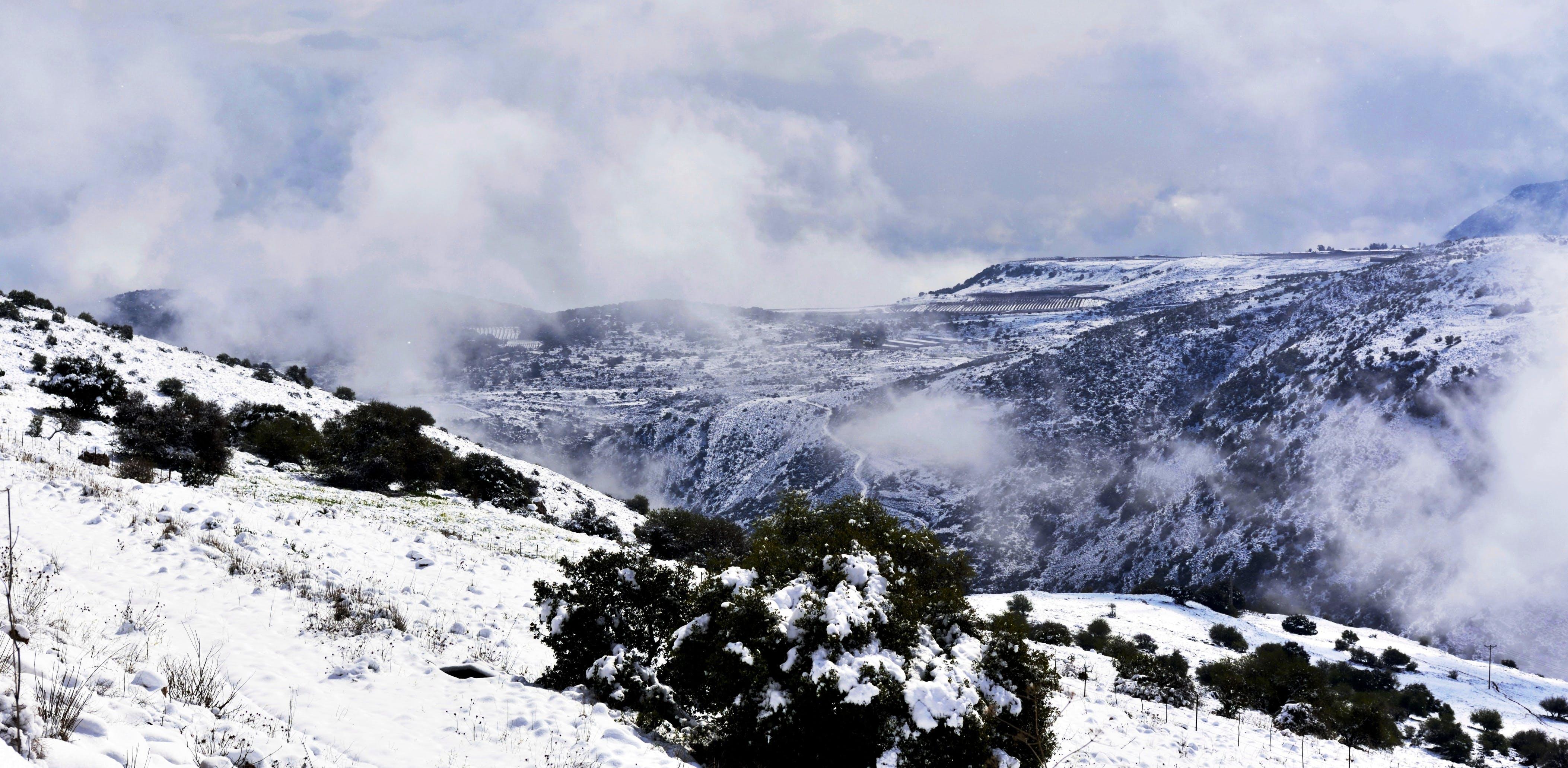 foggy, mountains, snow