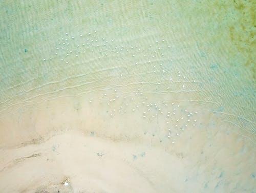 カランビン, ドローン撮影, 上から, 岸の無料の写真素材