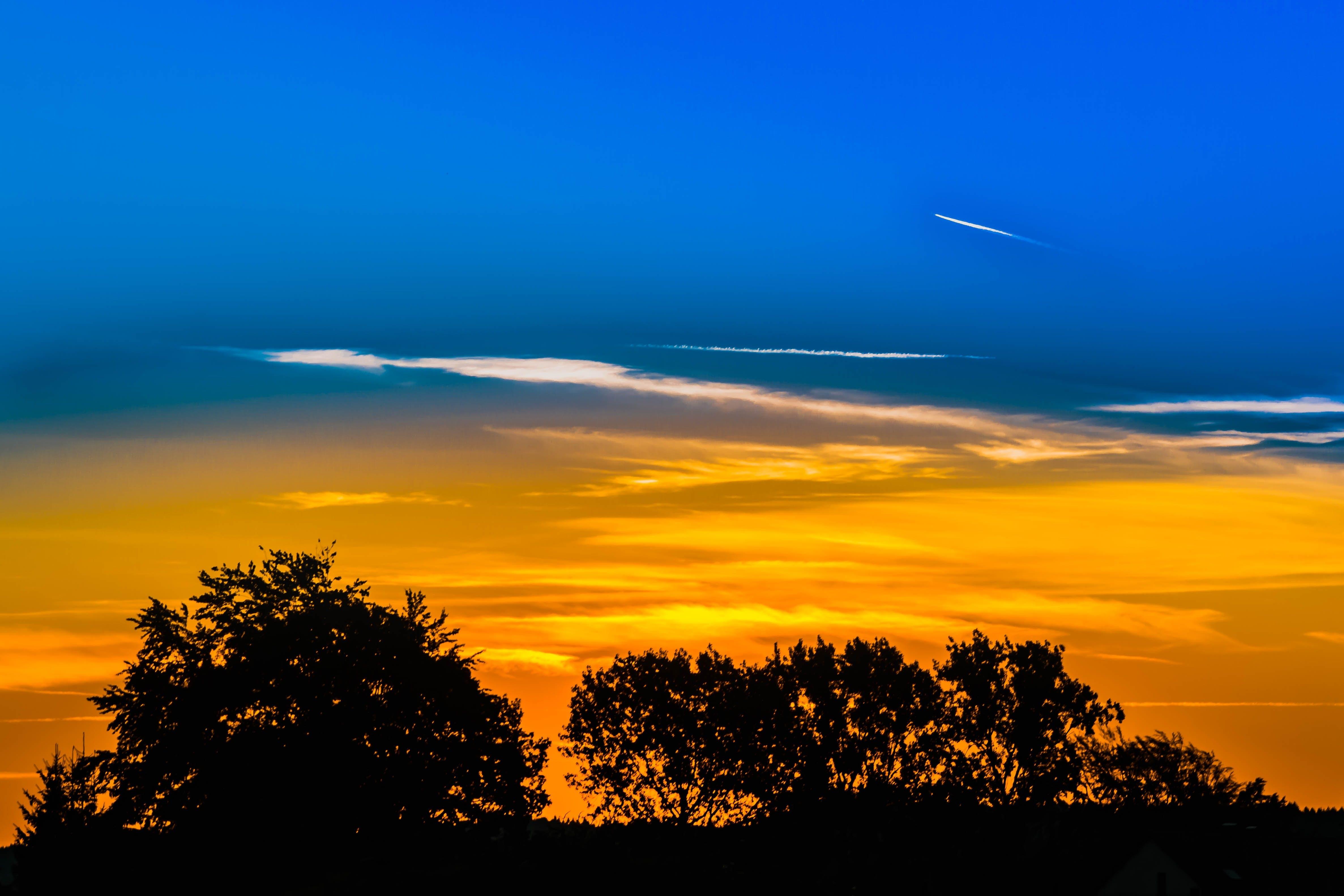 aften, atmosfærisk, bagbelyst