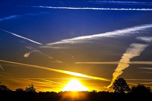 คลังภาพถ่ายฟรี ของ ดราม่า, ดวงอาทิตย์, ต้นไม้, ตะวันลับฟ้า
