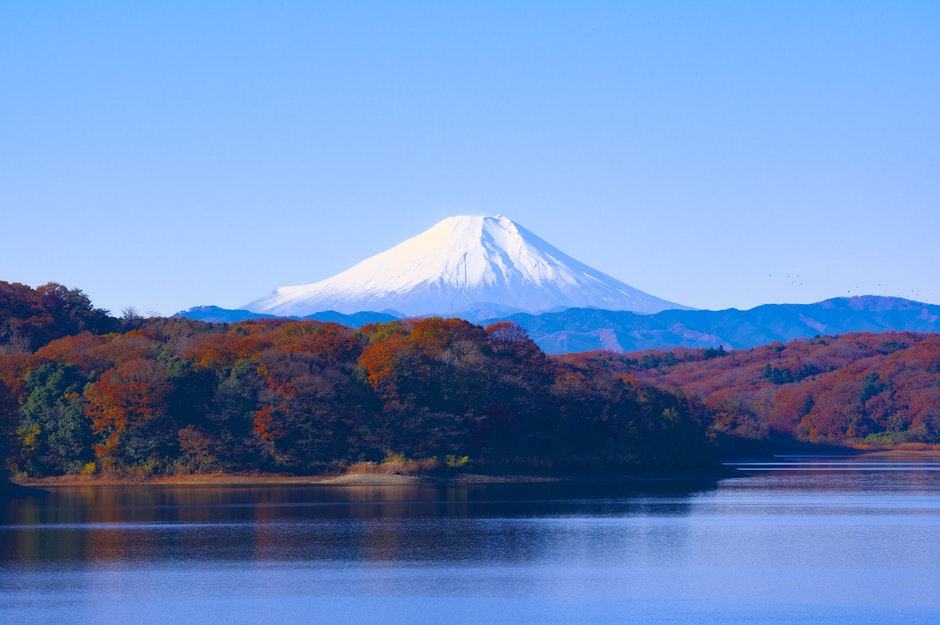 autumn leaves, calm waters, clear sky