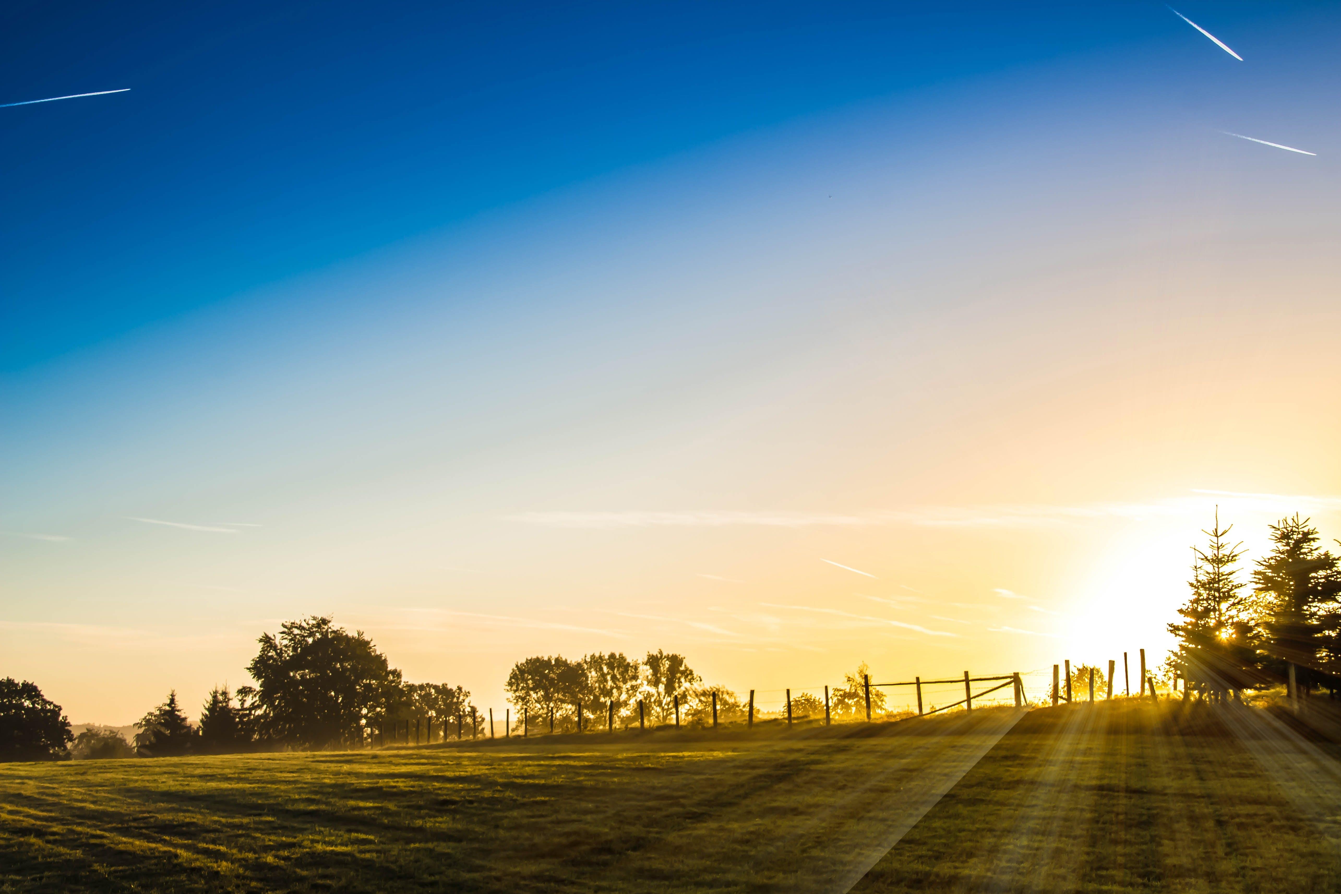 dawn, dusk, fence