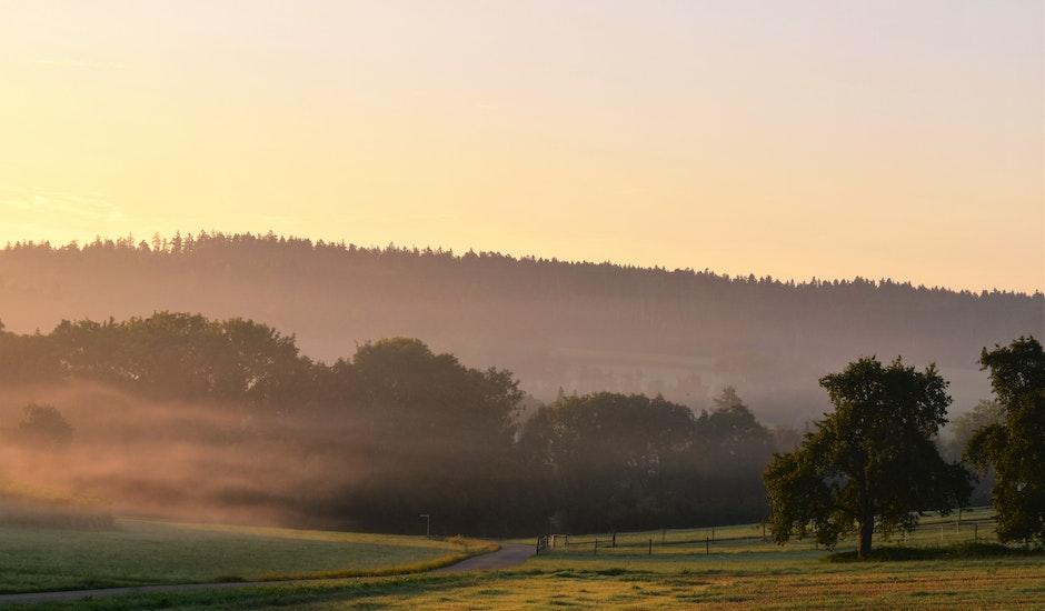 autumn, back light, fog