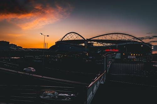 Gratis lagerfoto af appelsin, fodbold, fodboldstadion, fotograf