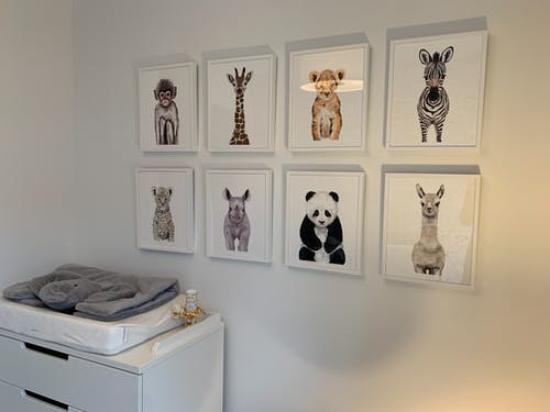 Different Kinds Of Animal Portraits On The Wall
