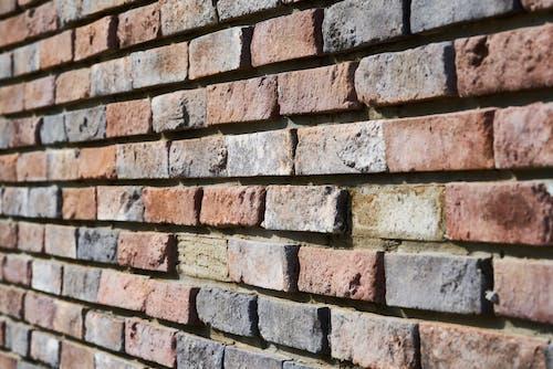 Foto d'estoc gratuïta de detall, maons, mur, mur de maons