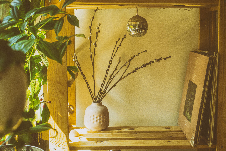 Twig In A Vase