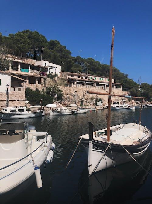 Photos gratuites de bateaux, embarcation, marina, mer