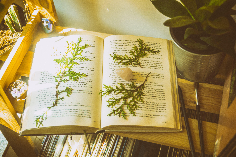 Δωρεάν στοκ φωτογραφιών με βιβλίο, βιβλιοδεσίες, σελίδα, χαρτί