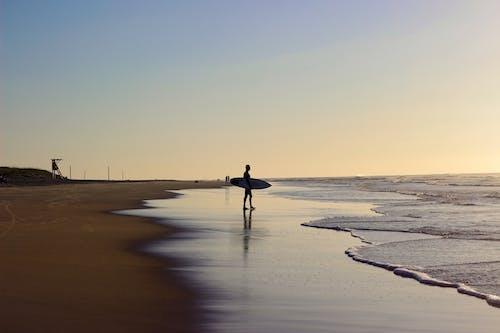 人, 剪影, 坎佩切, 岸邊 的 免費圖庫相片