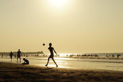 Безкоштовне стокове фото на тему «берег моря, вистава, вода, діти»