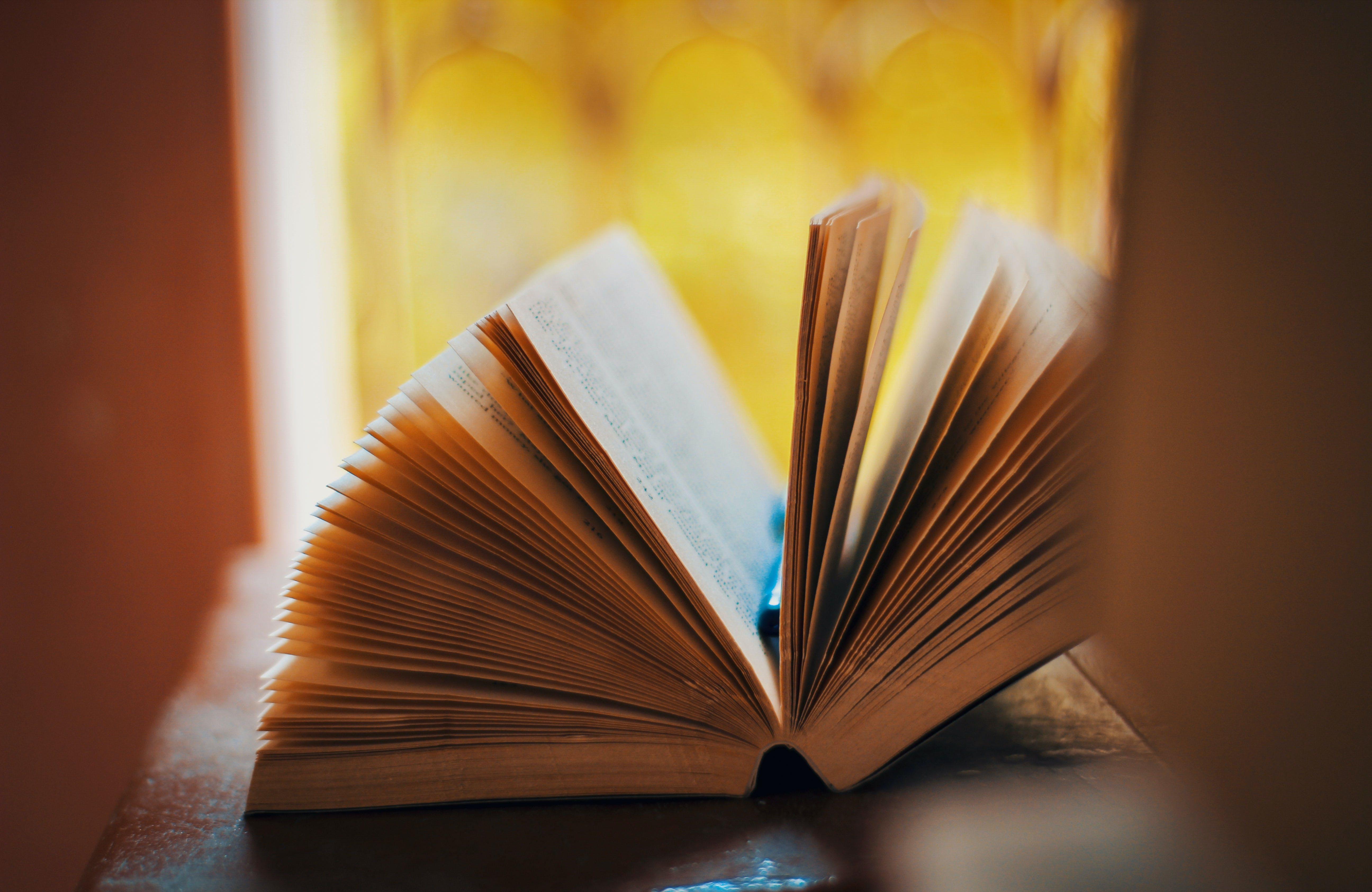 Gratis lagerfoto af bog, litteratur, sider, studere