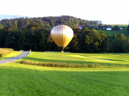 Foto profissional grátis de área, árvores, aterrissagem, balão de ar quente