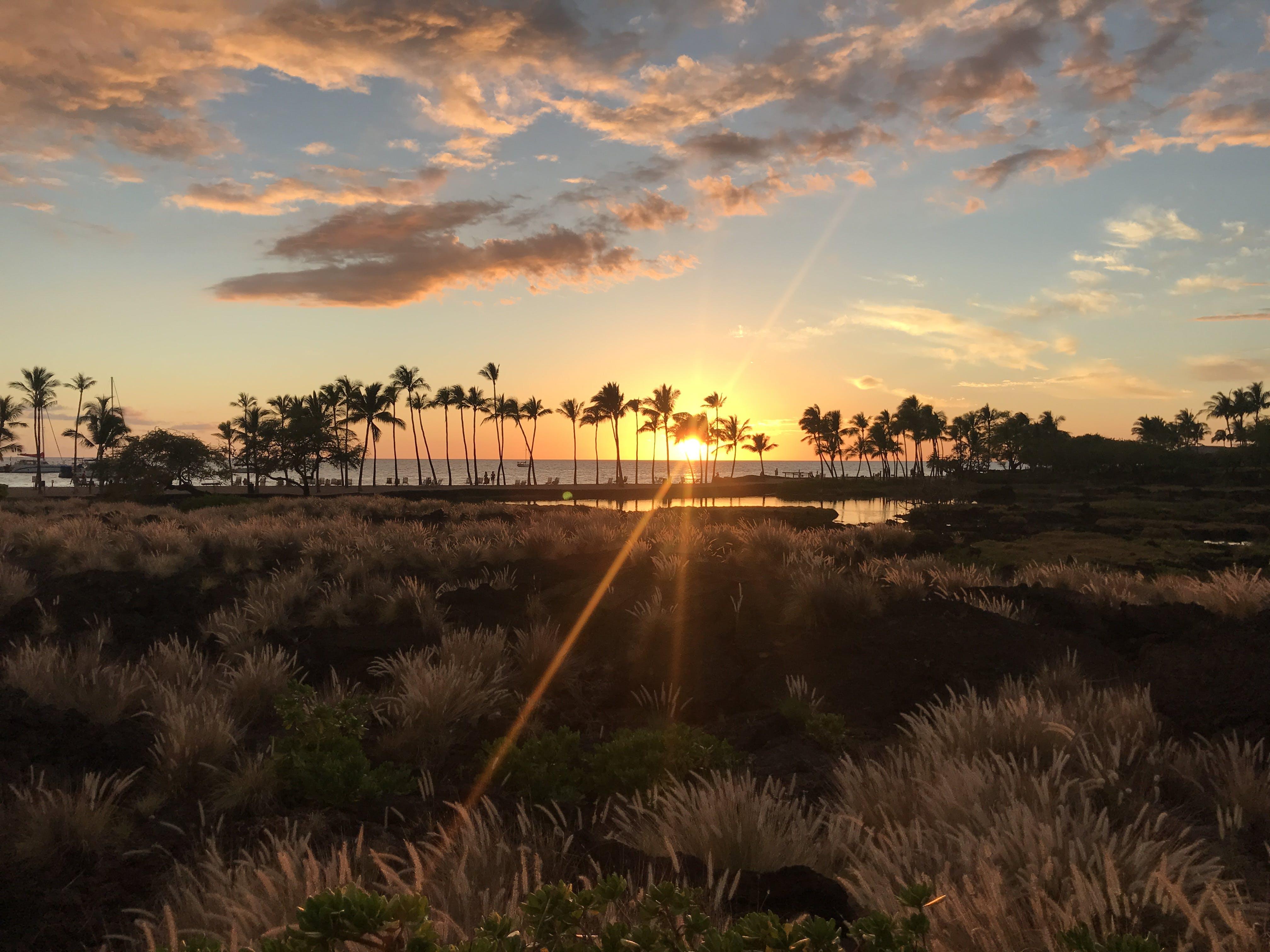Free stock photo of blue sky, clouds, hawaii, hawaiian