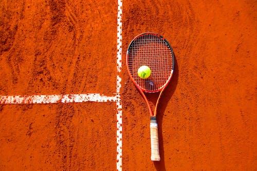 比賽, 法庭, 玩耍, 球 的 免费素材照片