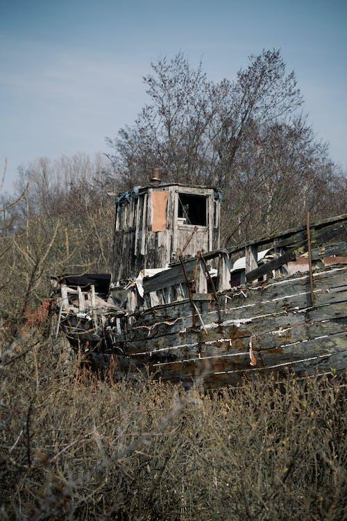 Free stock photo of abandoned, brushes, destroyed, rust