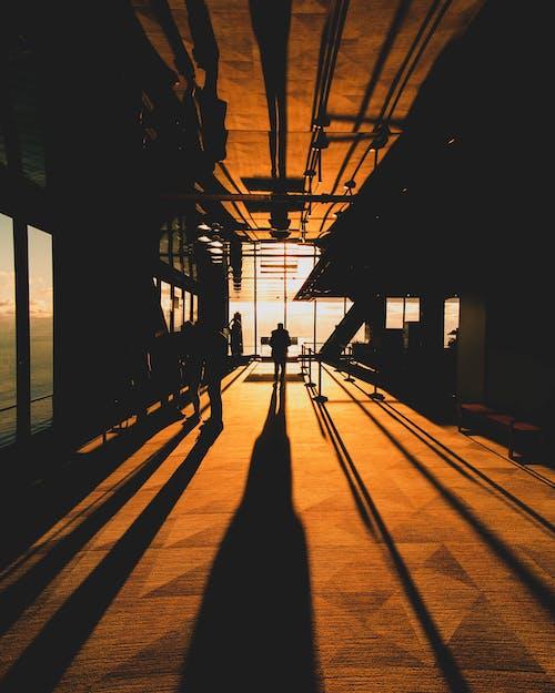 Foto stok gratis Arsitektur, bayangan, gelap, indah
