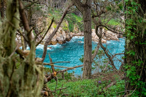 Free stock photo of beauty in nature, blue ocean, mother nature