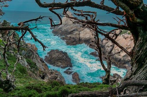 Free stock photo of beauty in nature, blue ocean, deep ocean
