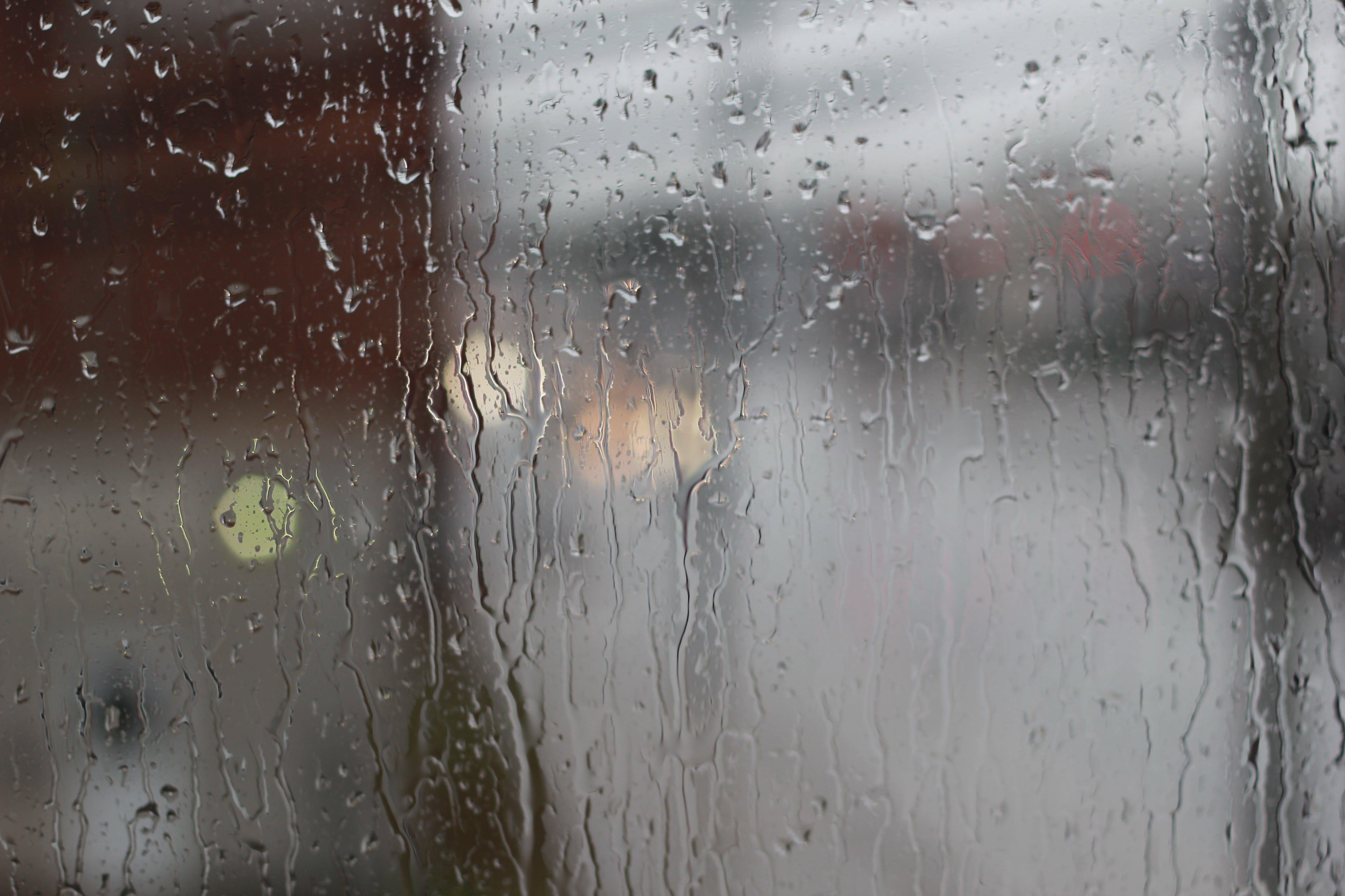 Free stock photo of drops of water, rain, raindrops, water