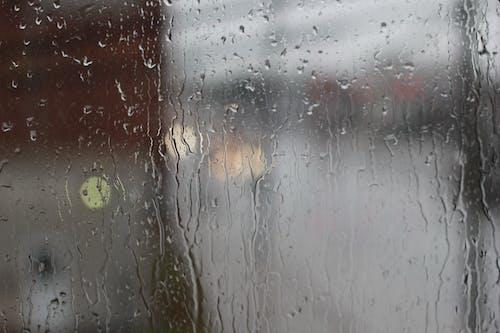 Безкоштовне стокове фото на тему «вода, дощ, краплі води, краплі дощу»