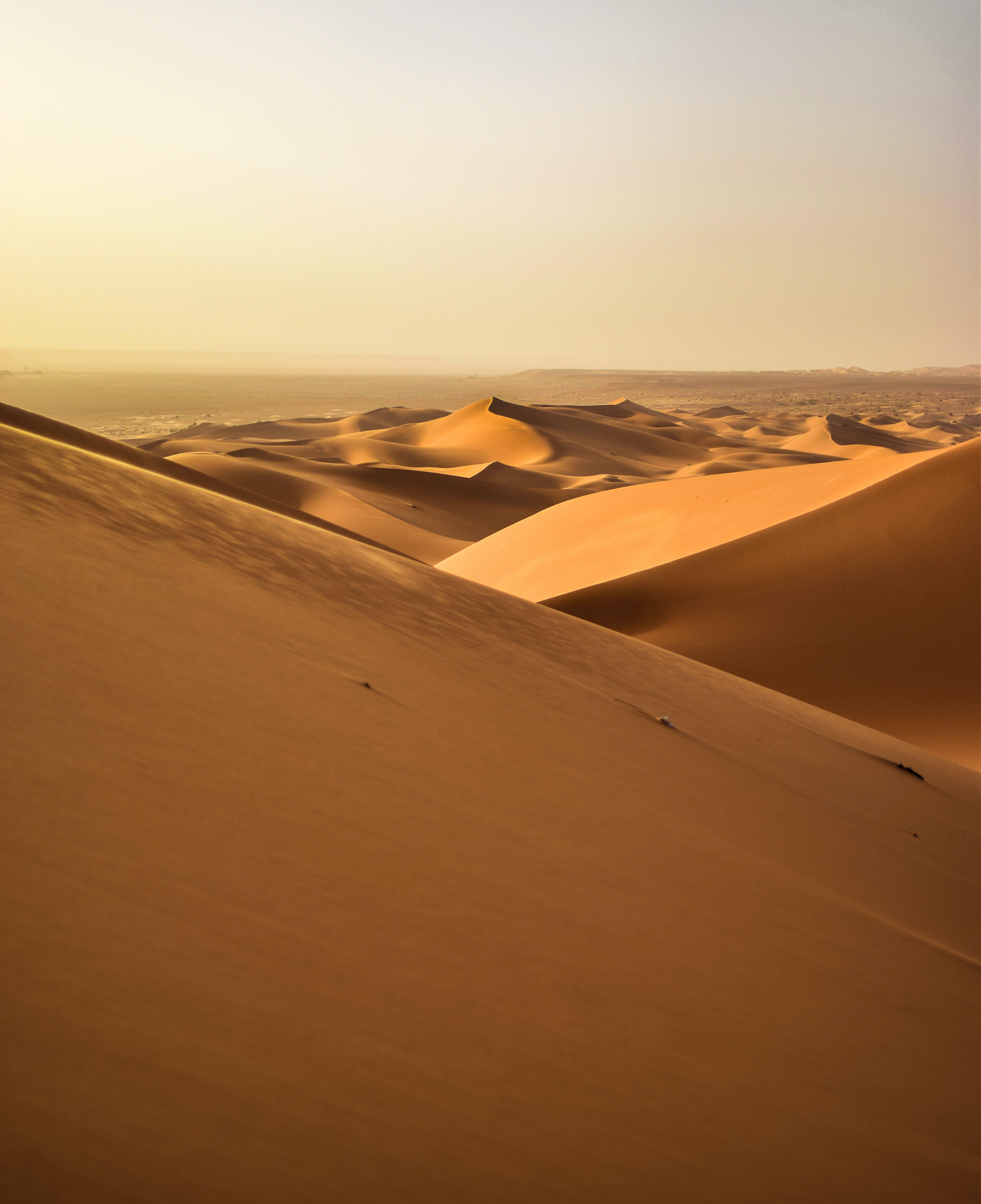 Foto profissional grátis de alvorecer, areia, árido, aventura