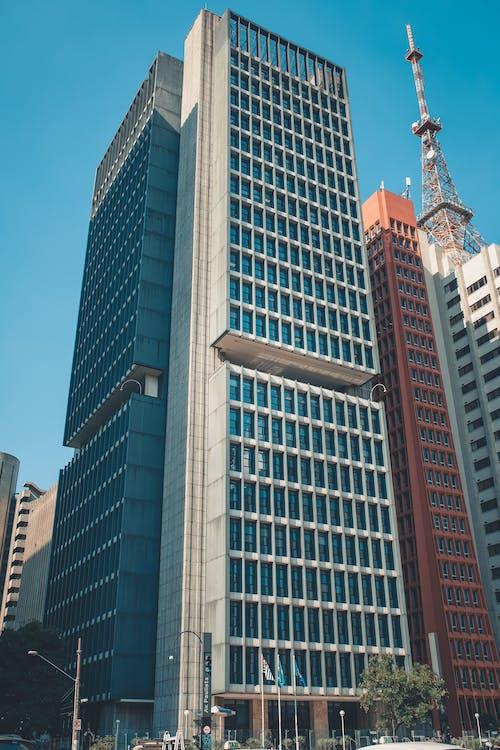 Ảnh lưu trữ miễn phí về các tòa nhà, cao tầng, góc chụp thấp, kiến trúc