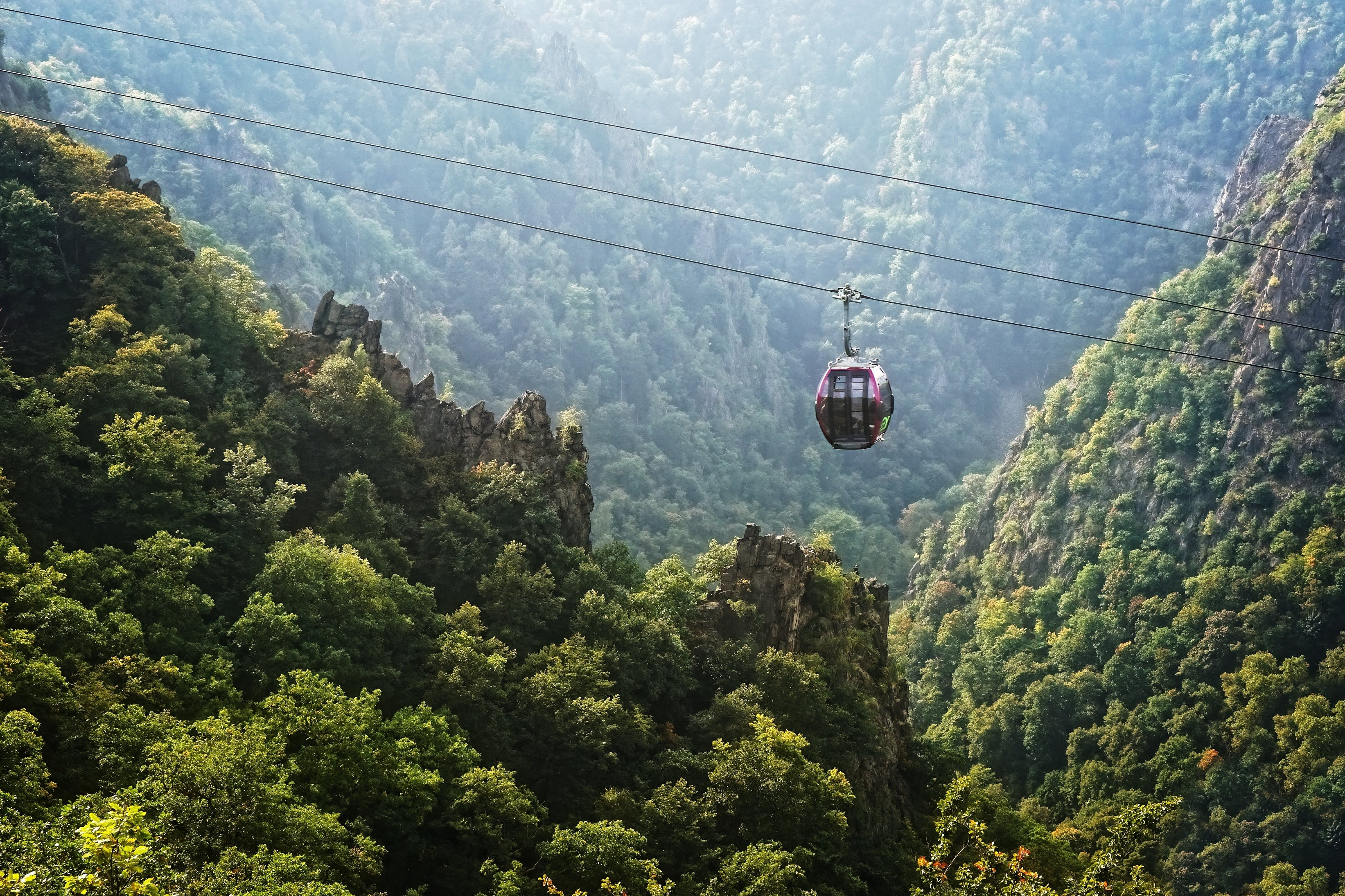 Kostenloses Stock Foto zu bäume, berg, nebel, neblig